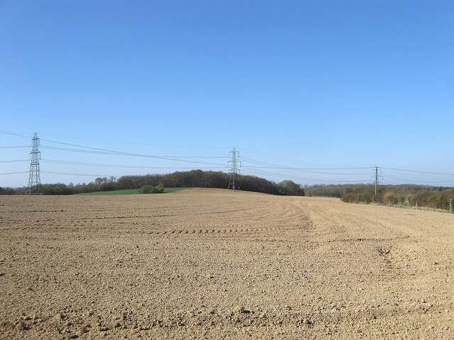 Tory Field/Lovers Barn Field/Site of Great Wood
