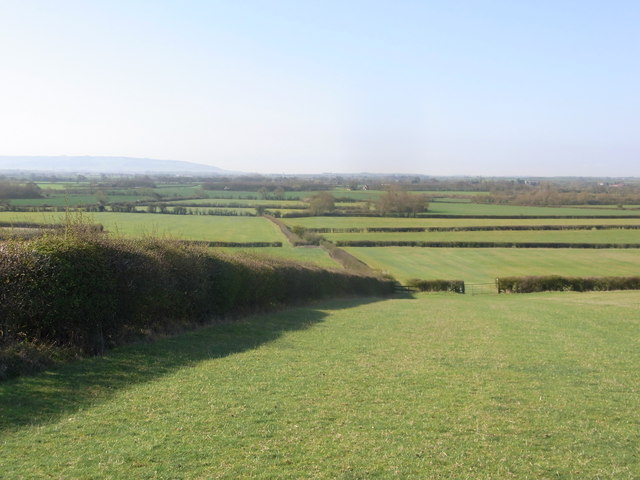 Follow the hedge, grassland near Flyford Flavell