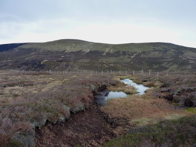 A boggy pool on Hill of Cammie