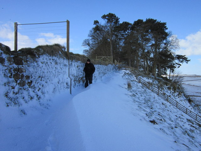 Walking east at Vercovicium Fort