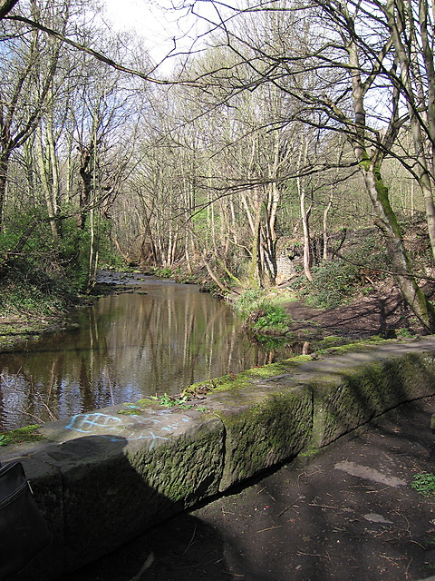 River Loxley at Wisewood