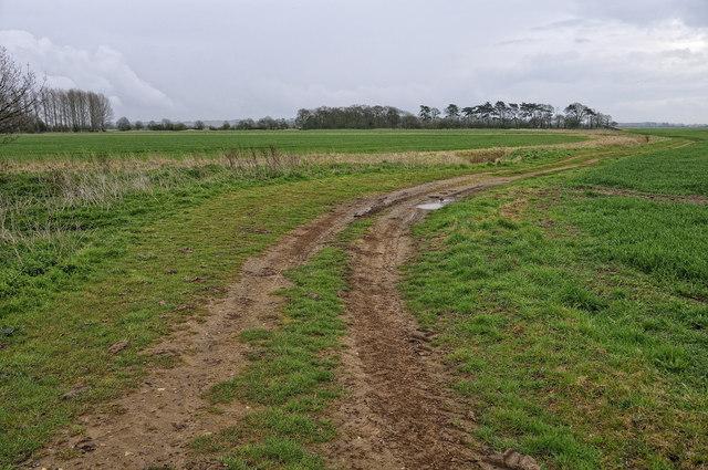 Farm track, near Wolferton