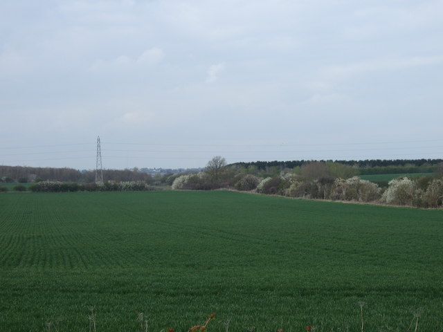 Farmland near Cotham