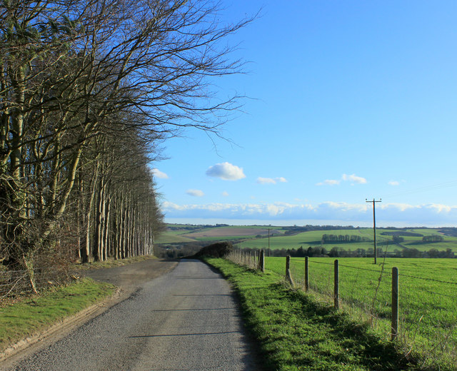 2012 : Farm road and bridleway to Fisherton de la Mere