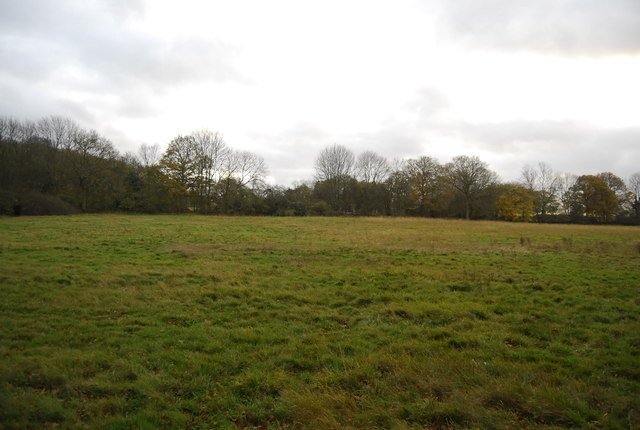 Field near Lambs Green