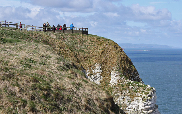 Birdwatching At Bempton Cliffs Pauline E Geograph