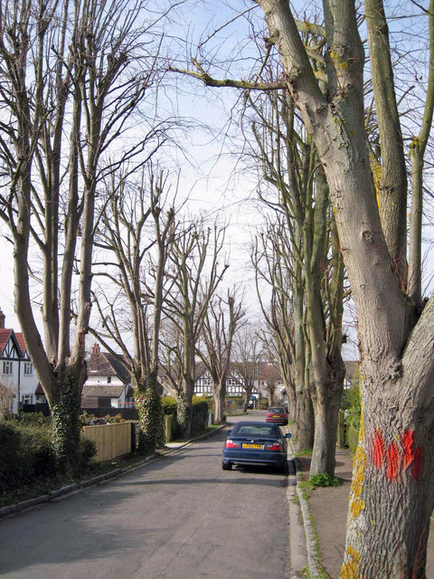 Lime Grove, Chinnor