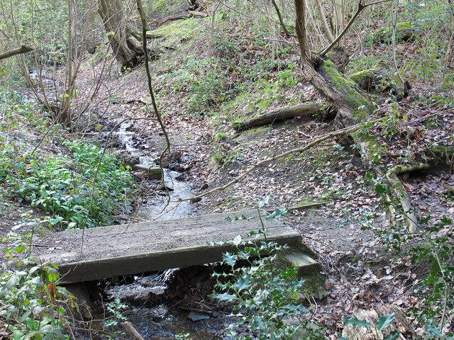 Norfolk Park: footbridge