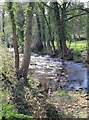 SK2890 : River Loxley near Loxley Fisheries by David P Howard