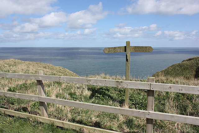 Headland Way footpath sign, above Bempton Cliffs