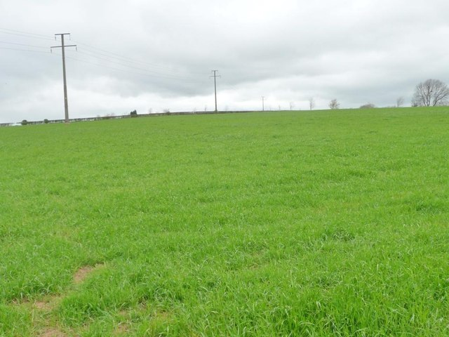 Telegraph poles crossing farmland