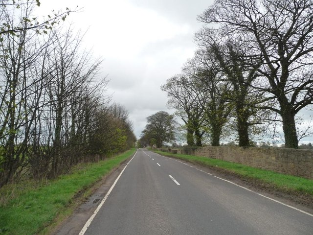 Thorner Road, near Biggin Park