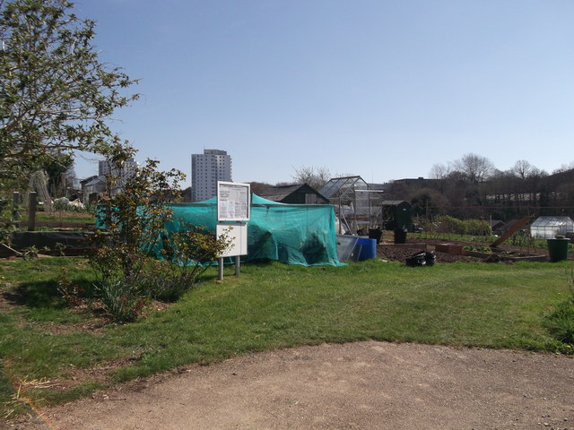 Blackman Avenue Allotment Gardens, Hastings