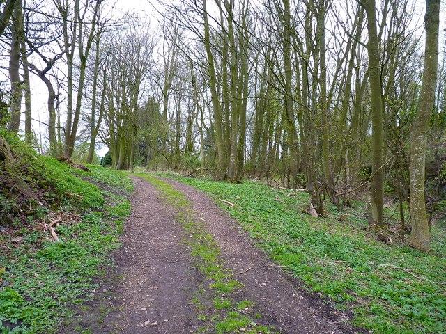 Track into Craighall