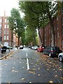 TQ2978 : Early autumn leaves in Erasmus Street by Basher Eyre