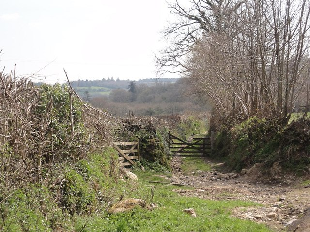 Farm Track