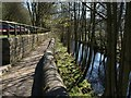 SE1565 : Riverside path, Pateley Bridge by Derek Harper