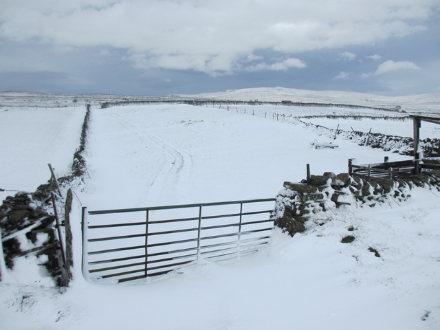 Field gate and snow by the road to High Birkwith