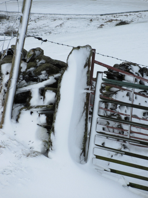 Snow plastered gatepost