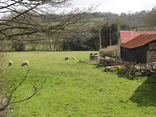 Field and Barns in Sigford