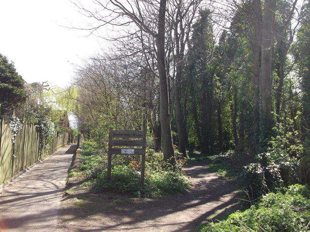 Summerfields Woods, Hastings