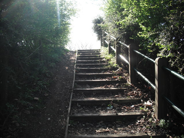 Steps to Scrub on Leyton Marshes E10
