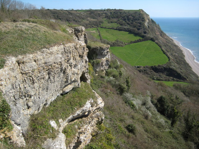 Cliffs on Lower Dunscombe Cliff