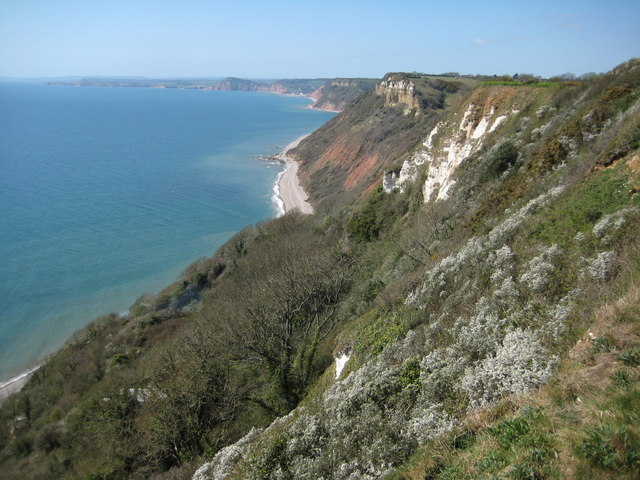 Coast viewed from Berry Camp