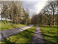 SD8204 : Heaton Park by David Dixon