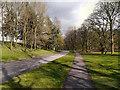 SD8204 : Heaton Park by David Dixon