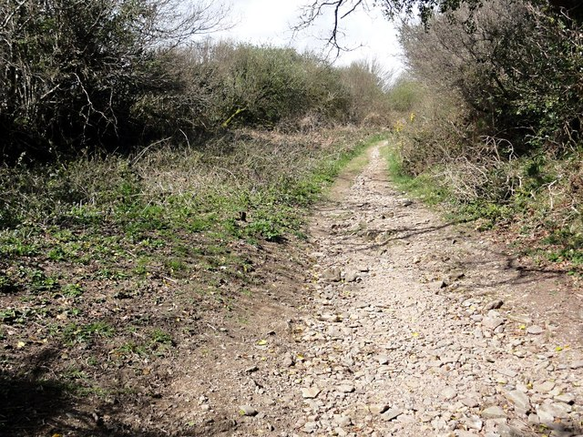 Bridleway at Moor Cross