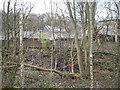 SK2989 : Derelict rolling mills near Storrs Bridge by Robin Stott