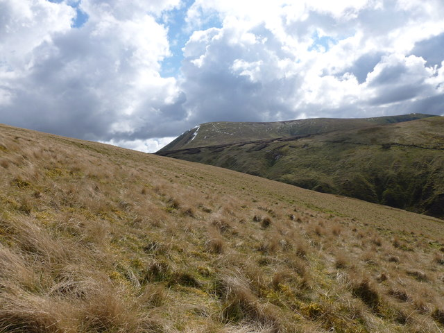 Looking towards Culter Fell from Crooked Bank