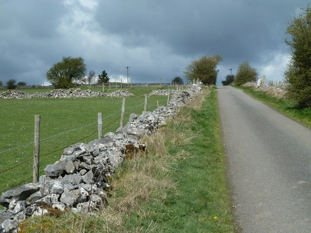 Looking up Leys Lane