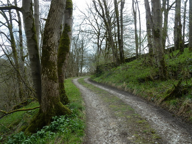Track to Griffe Grange Farm