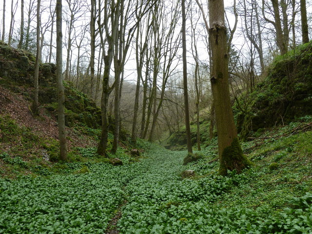 Side valley, Hopton Wood