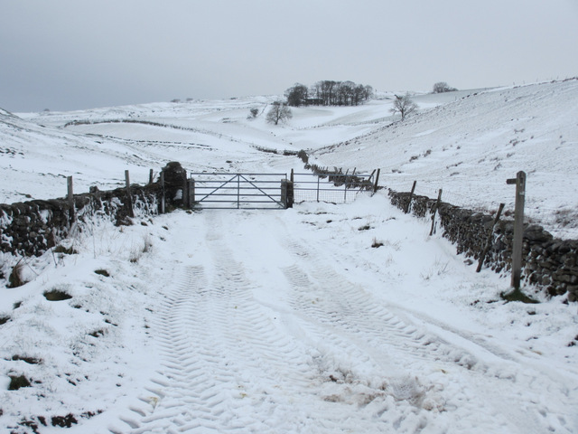 Track to Top Farm in the snow