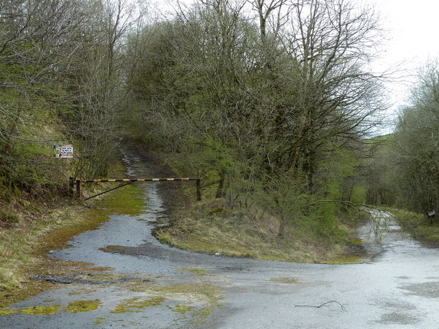 Old quarry roads in woodland, former Hopton Quarry