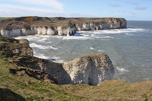 Chalk cliffs at Flamborough Head