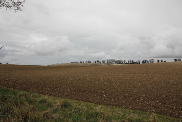 Farmland beside the road
