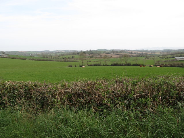 Countryside south of Cargabane Road