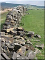 SK2490 : Dry stone walls on Ughill Moors by Dave Pickersgill