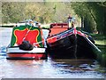 SJ5559 : Colourful narrowboats moored above Beeston Stone Lock by David Martin