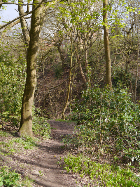 Path Through Prestwich Clough