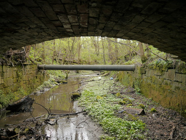 Water pipeline and tunnel in Barhill Plantation - alternative view