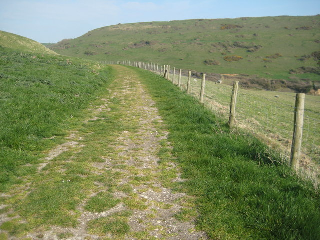 Track through Hill Bottom