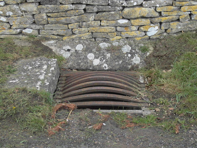 Bowed Drain Cover