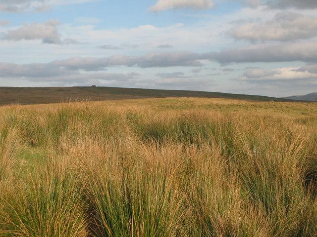 Round Hill (2)