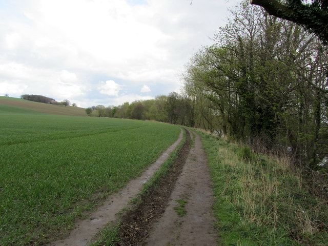 Footpath on The Sandbeds