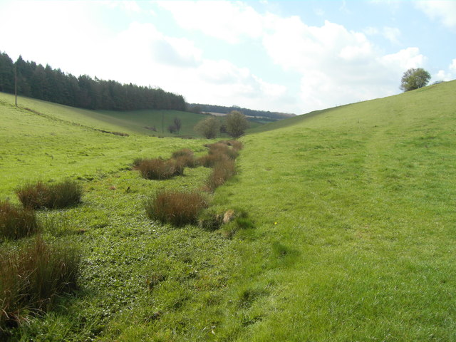 Brook east of Rendcomb